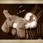 Un compagno di letto.. immobile!